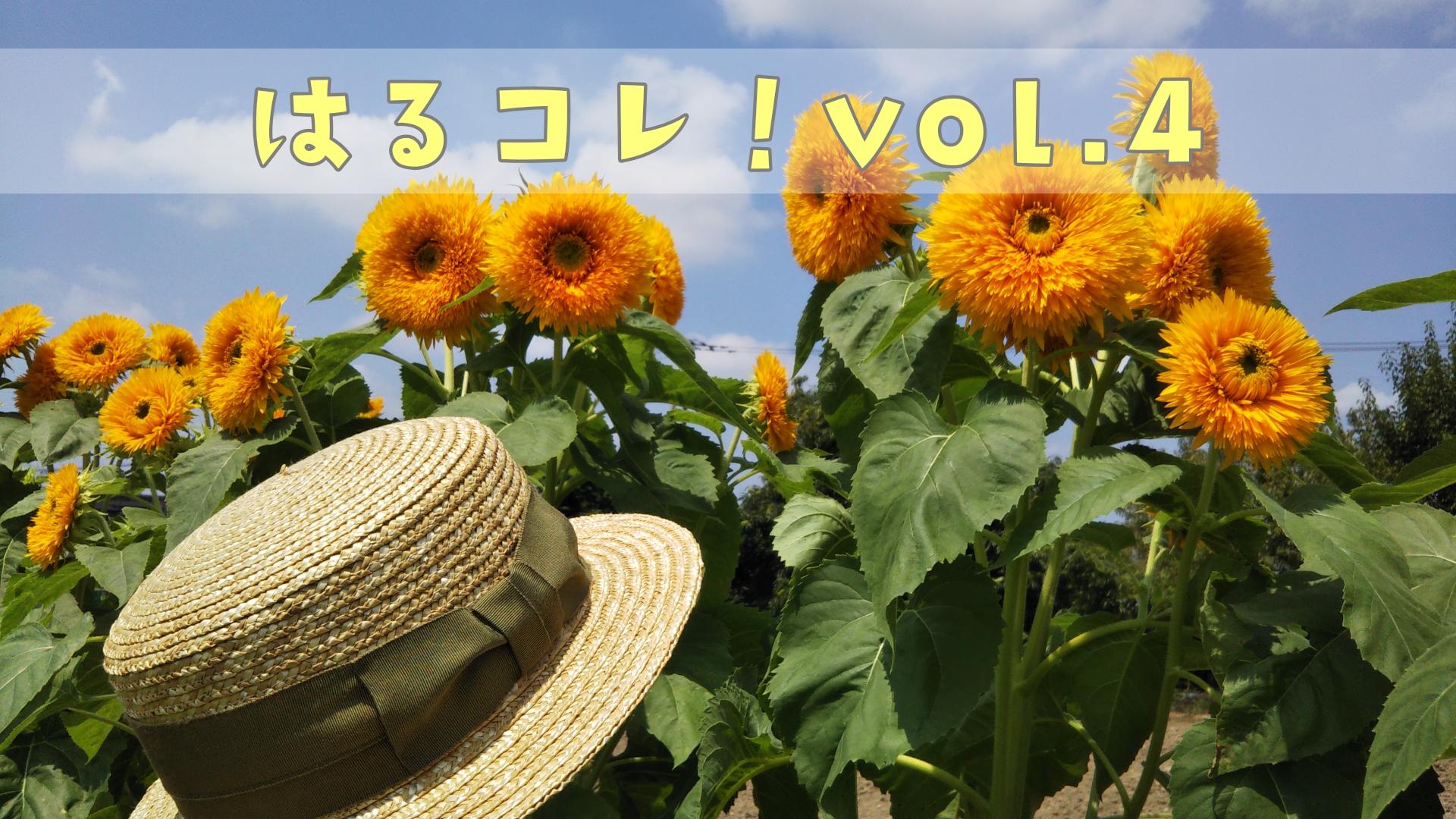 春日部,麦わら帽子,田中帽子店,ひまわり,八重ひまわり