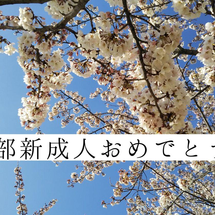 春日部,春日部市,成人式