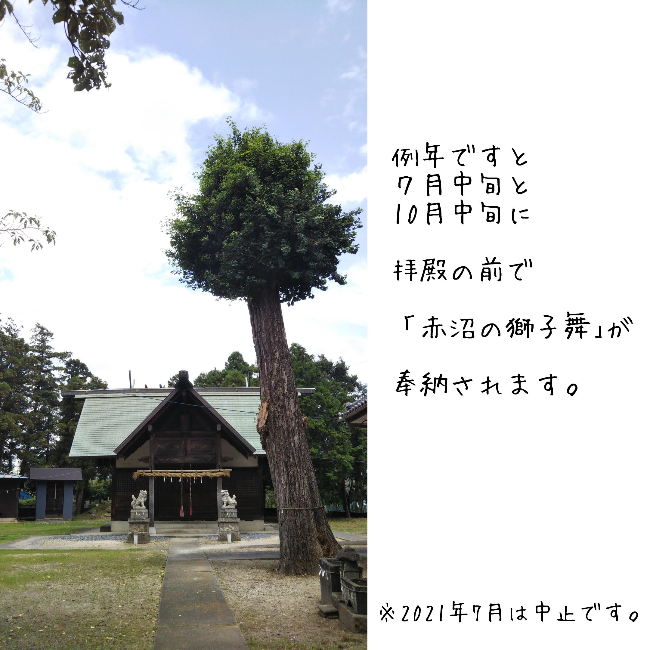 春日部,神社,temple,赤沼神社